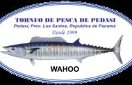 TORNEO DE PESCA ALHIKASO DE PEDASÍ / 9, 10 Y 11 DE JUNIO