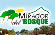 MIRADOR DEL BOSQUE
