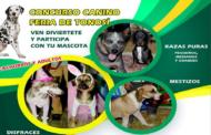CONCURSO CANINO EN FERIA DE TONOSI