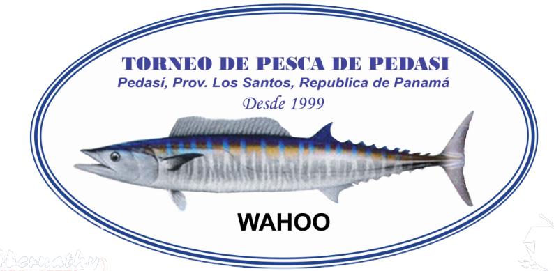 XIX TORNEO ALHIKASO DE PESCA EN PEDASÍ