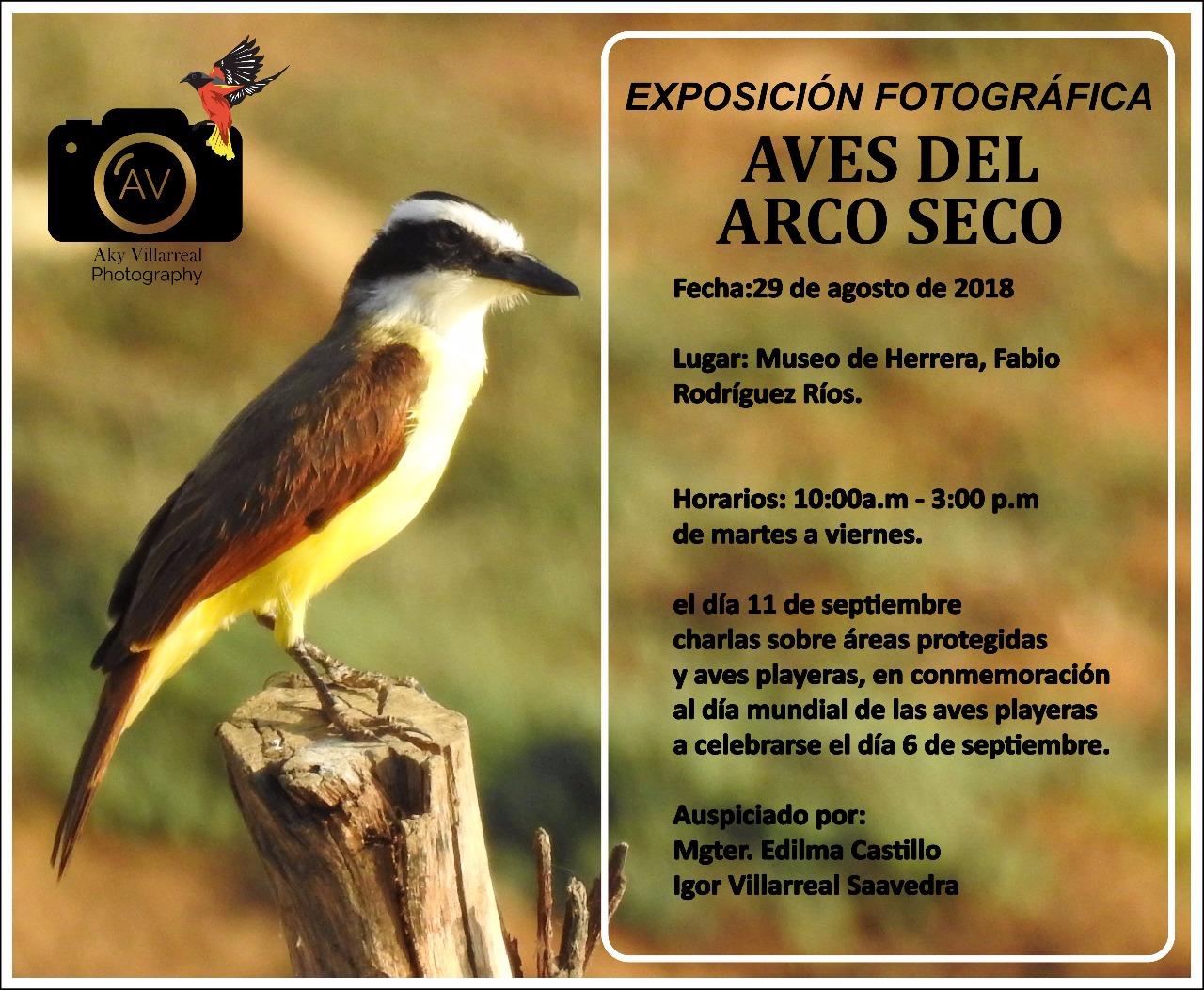 EXPOSICIÓN FOTOGRÁFICA AVES DEL ARCO SECO EN EL MUSEO DE HERRERA HASTA EL 29 DE SEPTIEMBRE